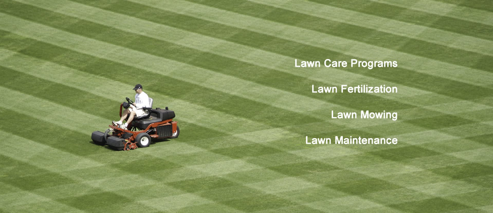 lawn mowing maintenance fertilization